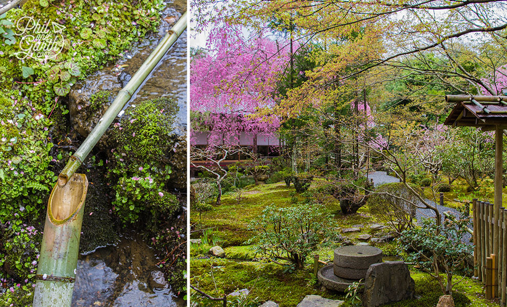 kyoto_japan_Ryoanji_Temple_garden_details_travel_review_and_quick_video