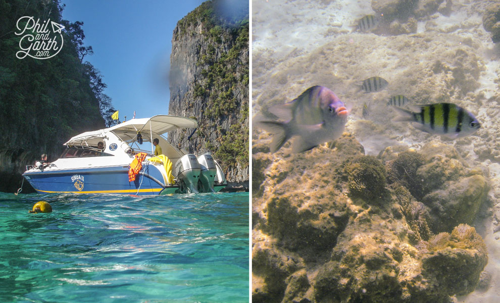 Phuket_Snorkelling_Loh_Samah_Bay_Ko_Phi_Phi_Leh_travel_review