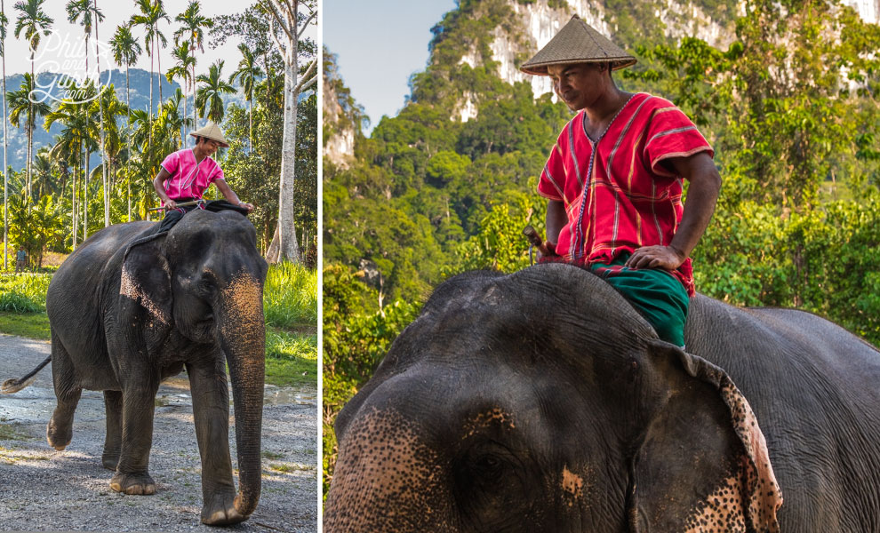 khao_sok_elephant_hills_6_Mahout_travel_review_and_video