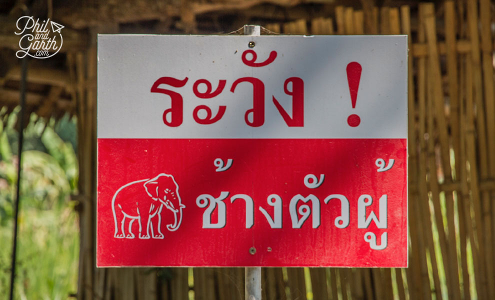 khao_sok_elephant_hills_danger_elephants_sign_travel_review_and_video