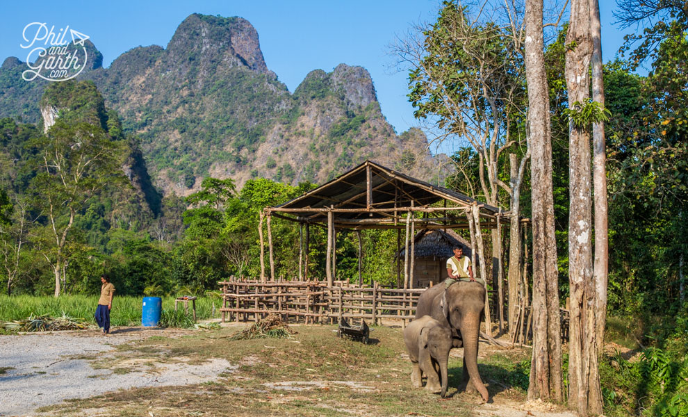 khao_sok_elephant_hills_unique_experience_travel_review_and_video