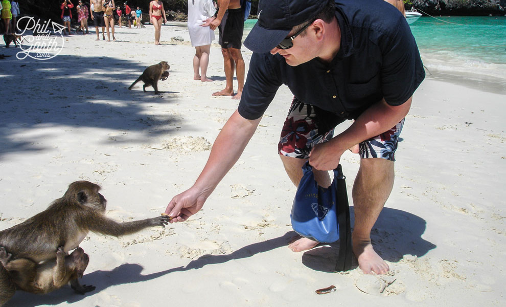Phuket_Ko_Phi_Phi_Don_Phil_at_Monkey_Beach_1_travel_review