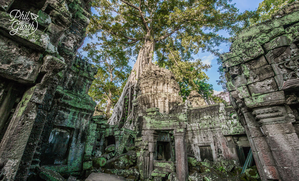 When Ta Prohm was rediscovered, a decision was taken to leave it exactly as it was found