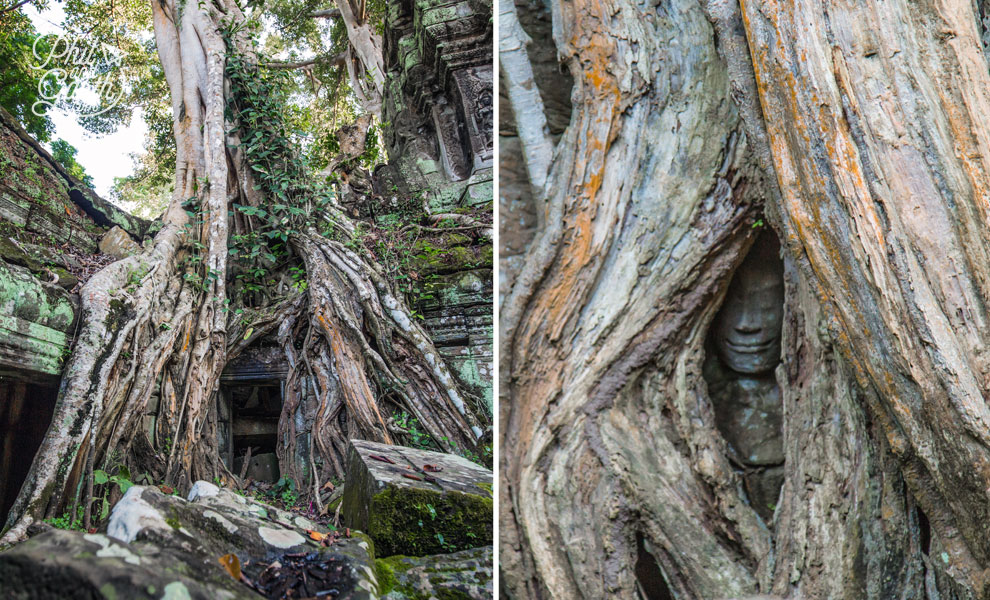 Seek out this hidden face at Ta Prohm