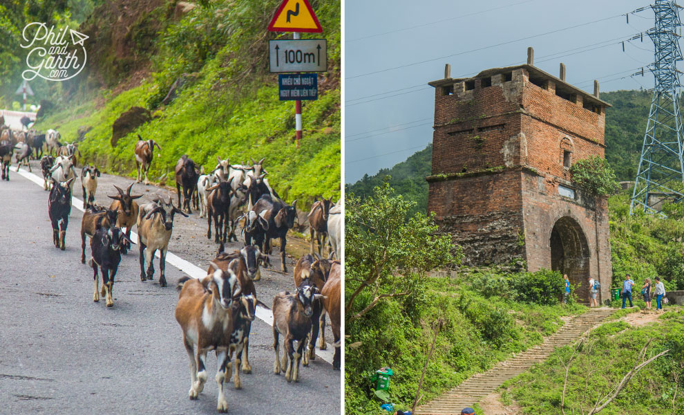 Goats and a fortress along the Hai Van Pass