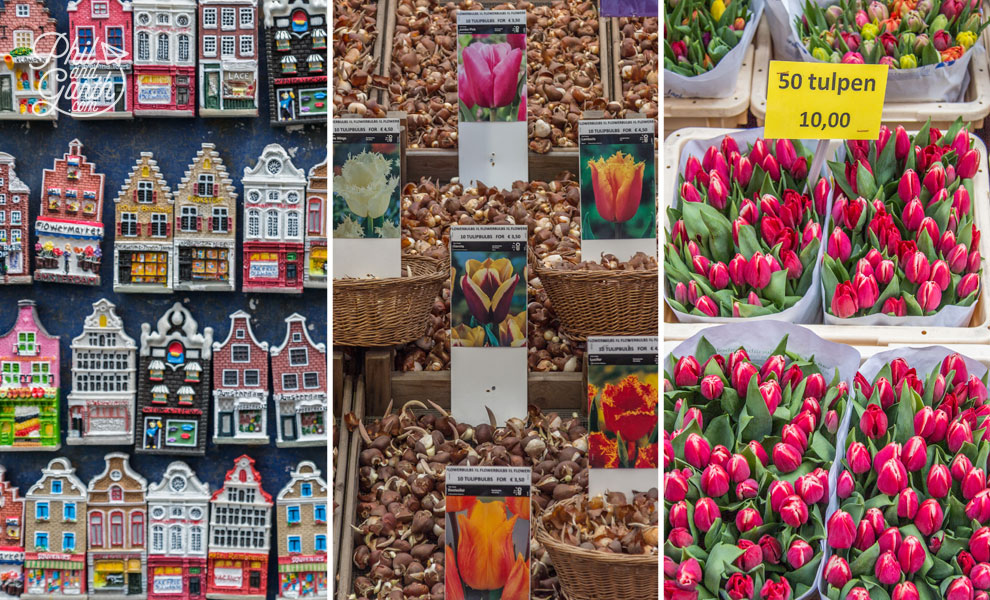 Bloemenmarkt things to buy
