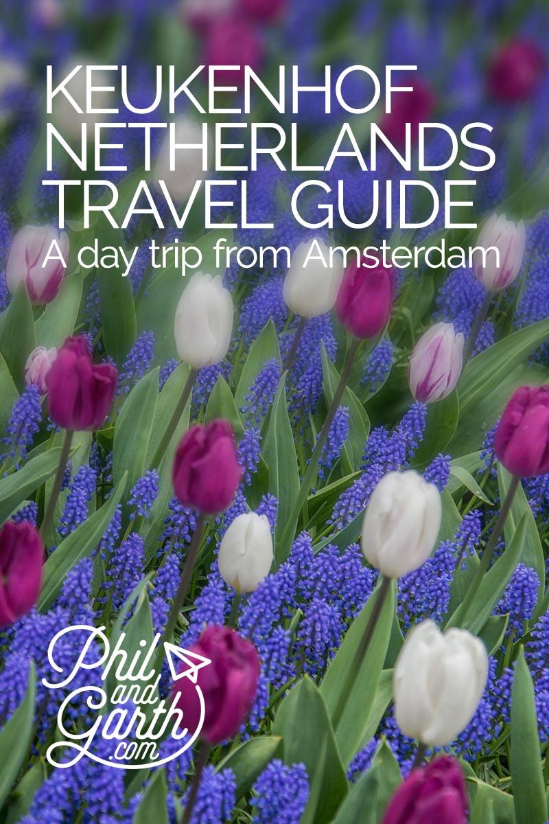 Keukenhof Amsterdam Tulips