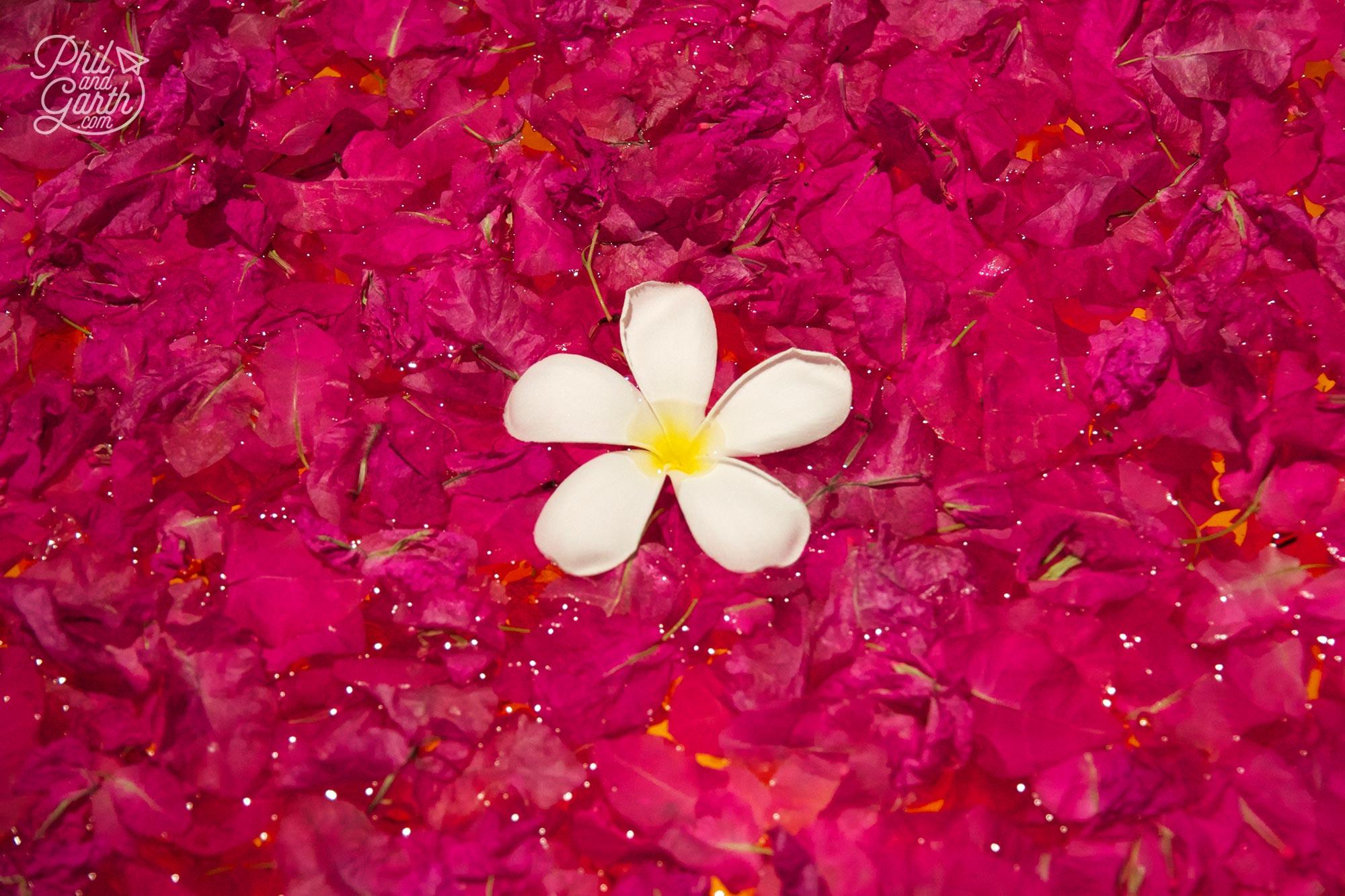 So many simple yet beautiful displays using flower petals