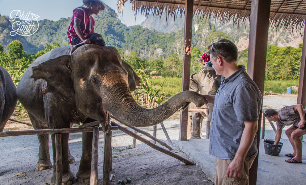 khao_sok_elephant_hills_phil_feeding_the_elephants_travel_review_and_video