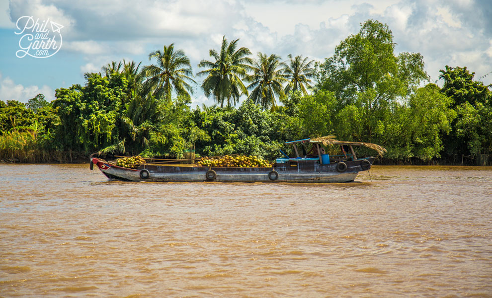 A barge laden with coconuts