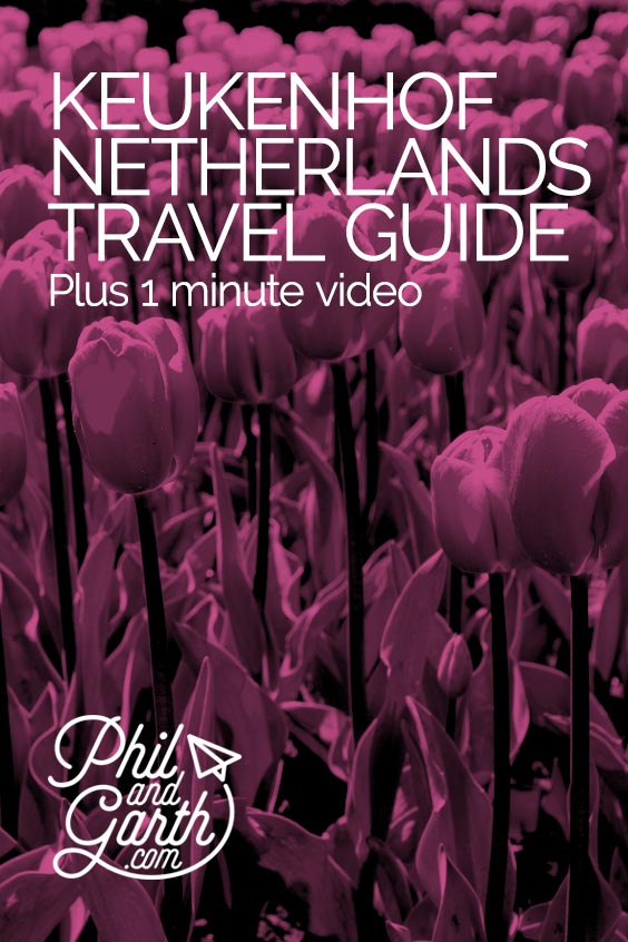 Keukenhof, Netherlands travel guide and video in 60 seconds