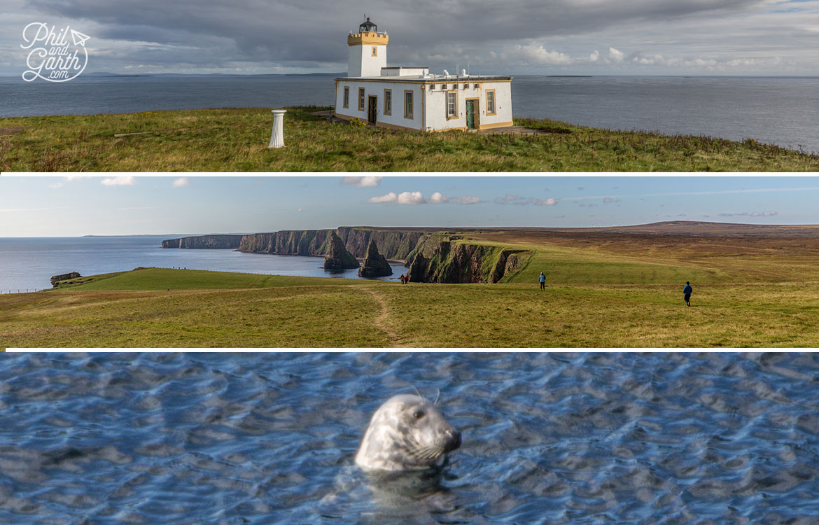 Duncansby Head Lighthouse and grey seals