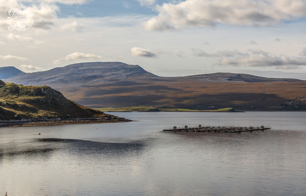 Just one of the many salmon farms you'll see in the middle of the lochs