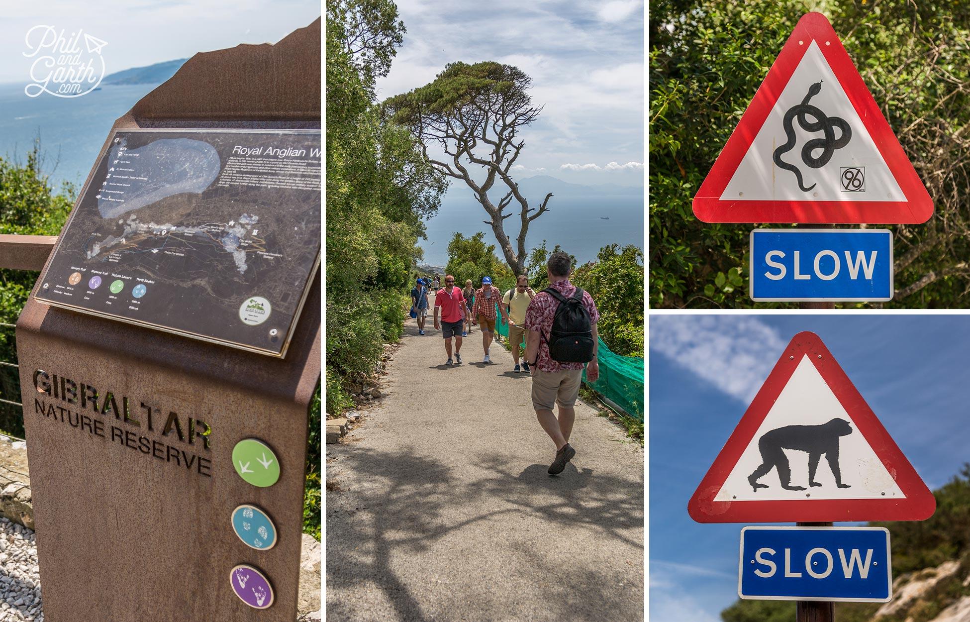 Walking Gibraltar's Nature Reserve