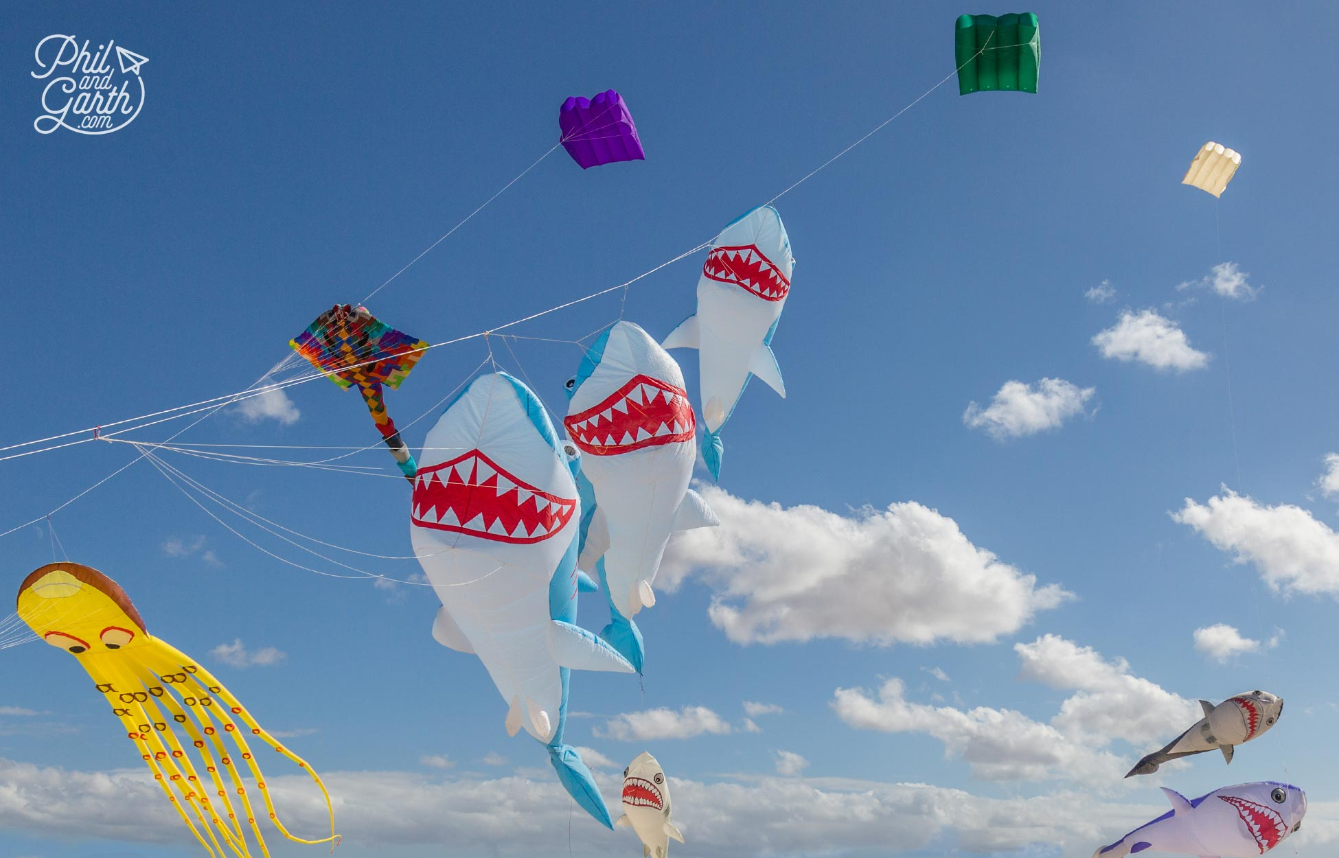 Fantastic kite displays at Playa Chica