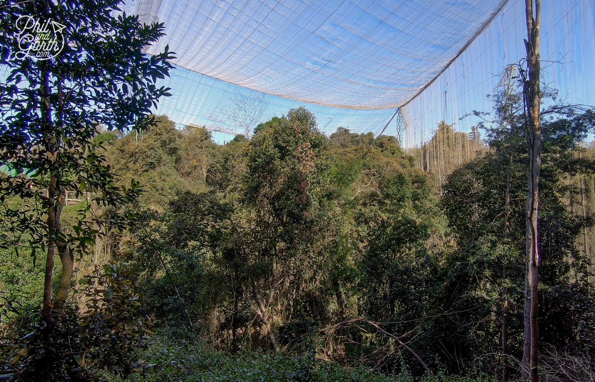 The Garden Route - The world's largest aviary