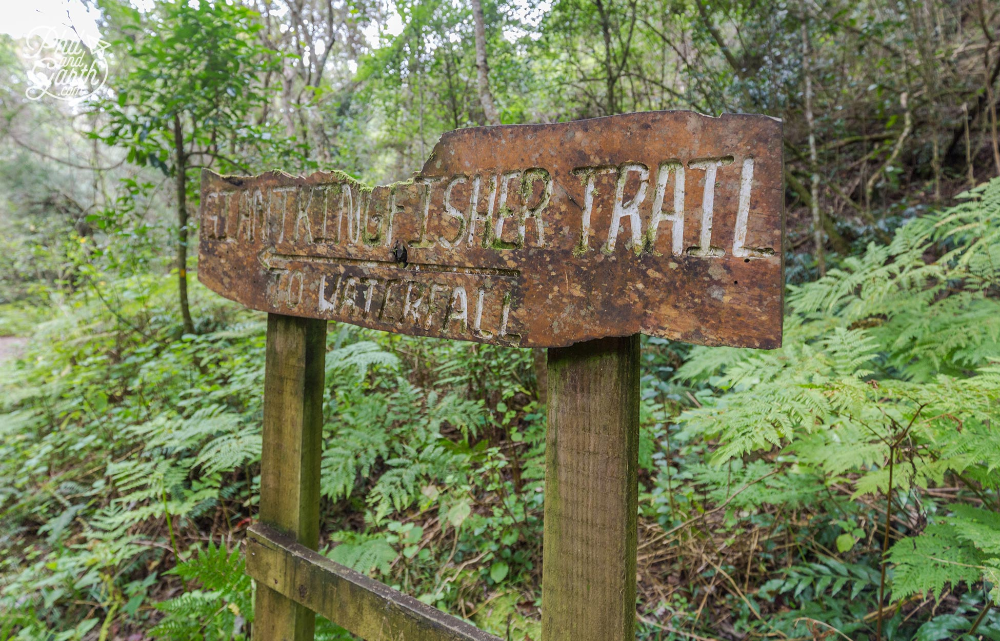 Giant Kingfisher Trail sign points us to the waterfall