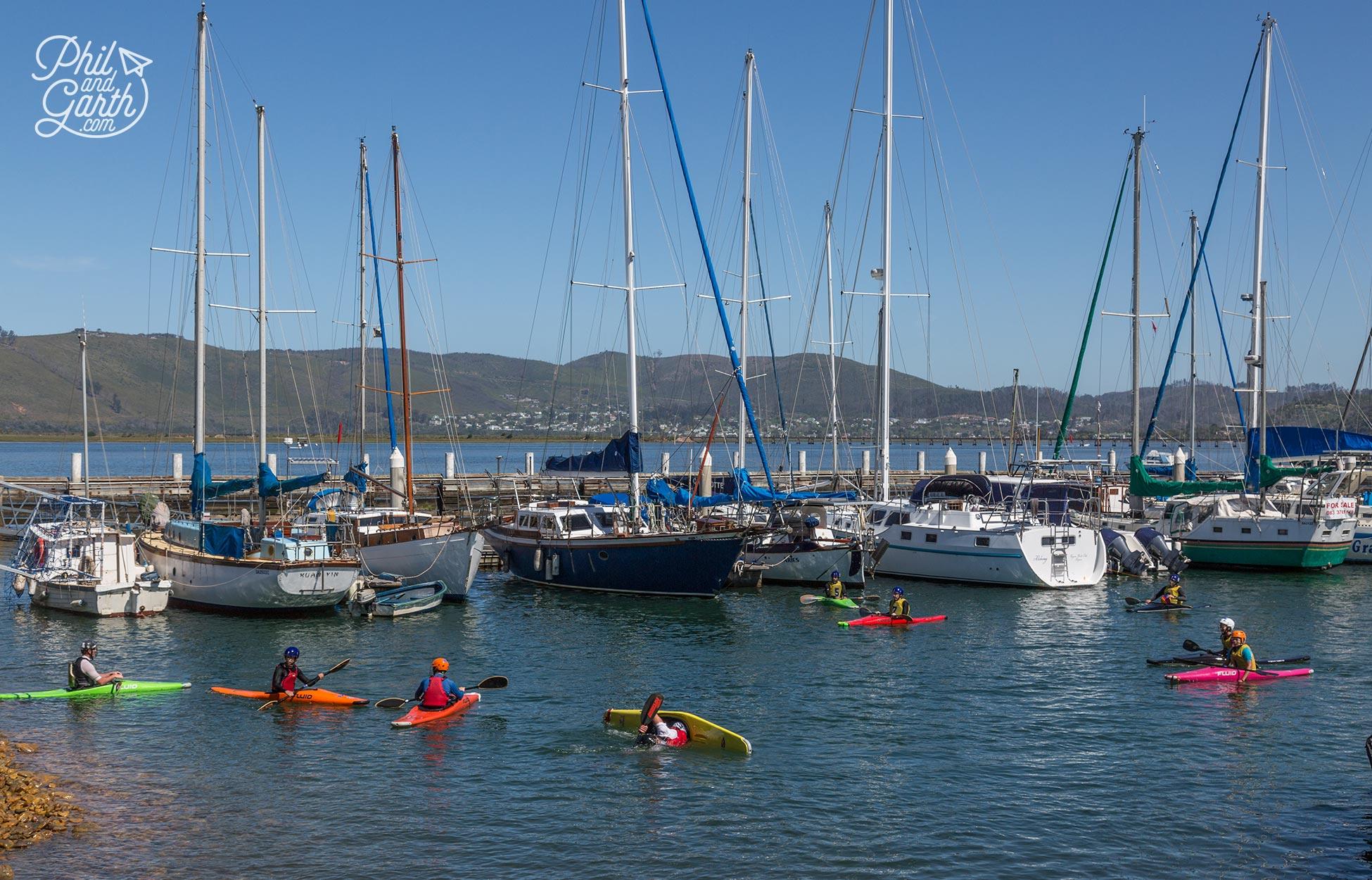 People learning to kayak in the Knysna lagoon