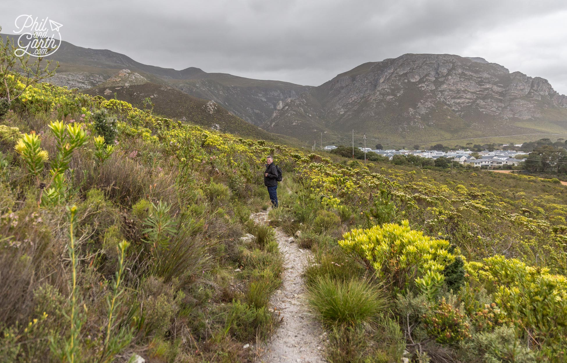 Phil on one of the walking trails of Fernkloof Nature Reserve
