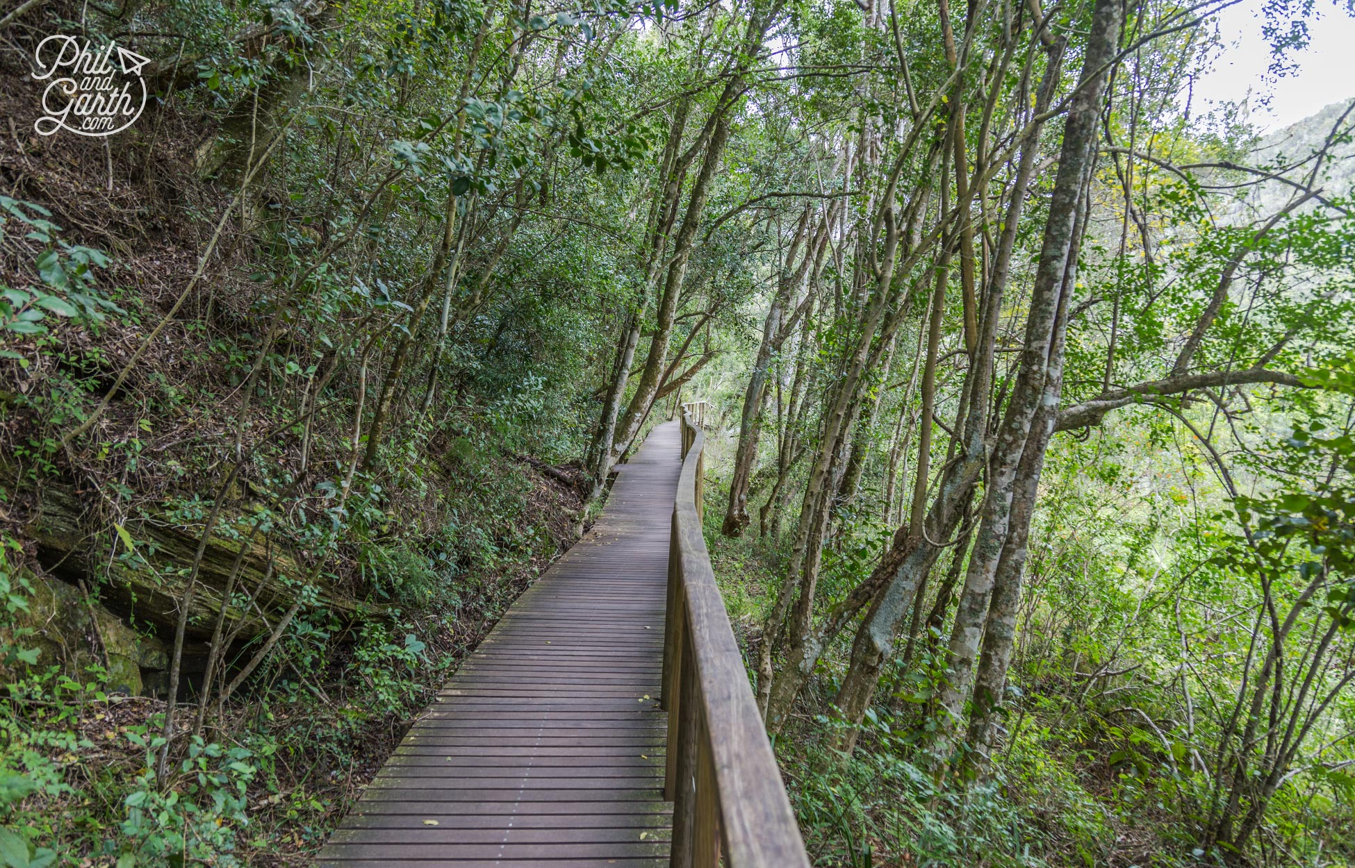 Long stretches of elevated walkways guide you to the waterfall