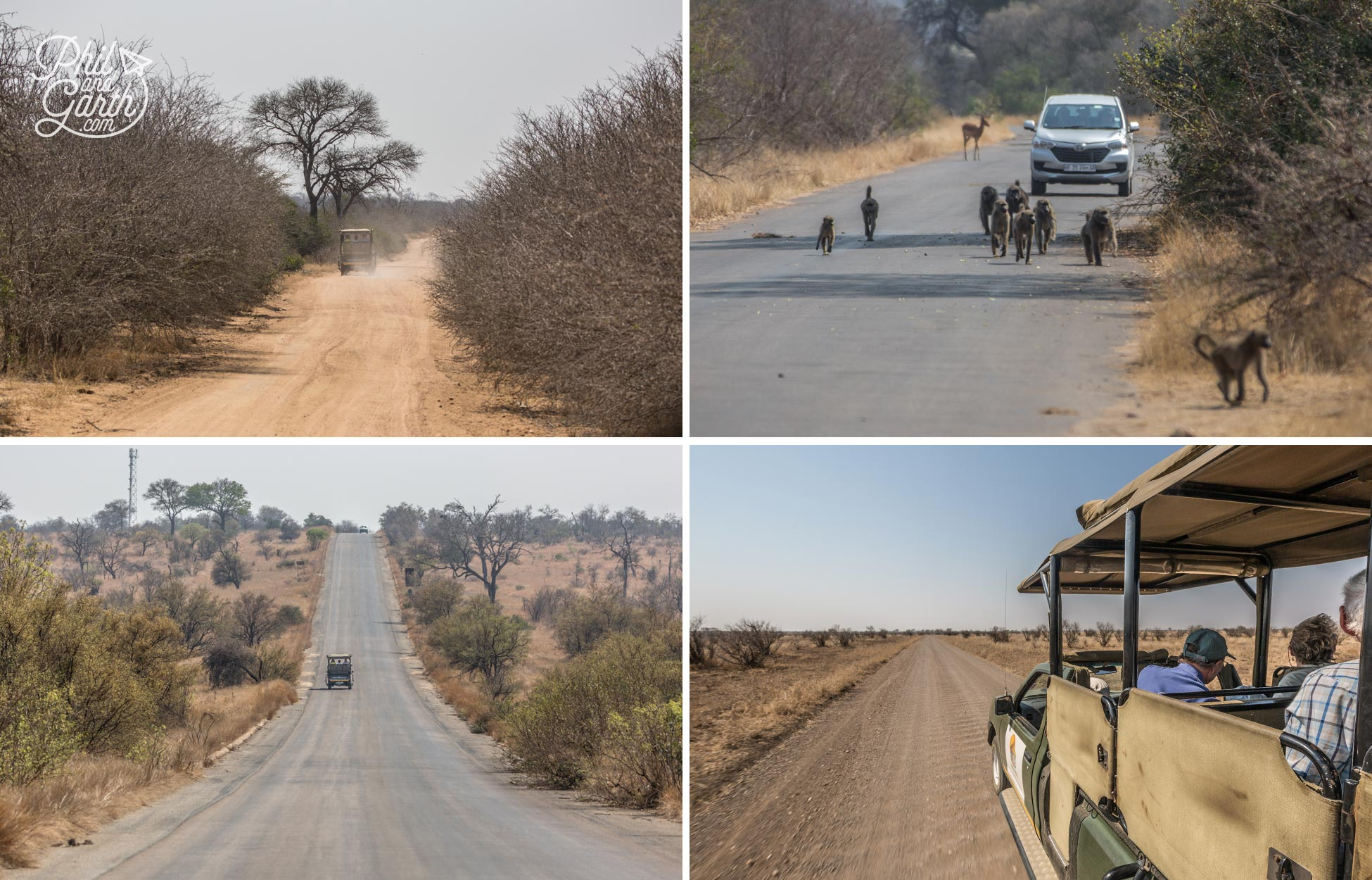 The different types of roads in Kruger National Park