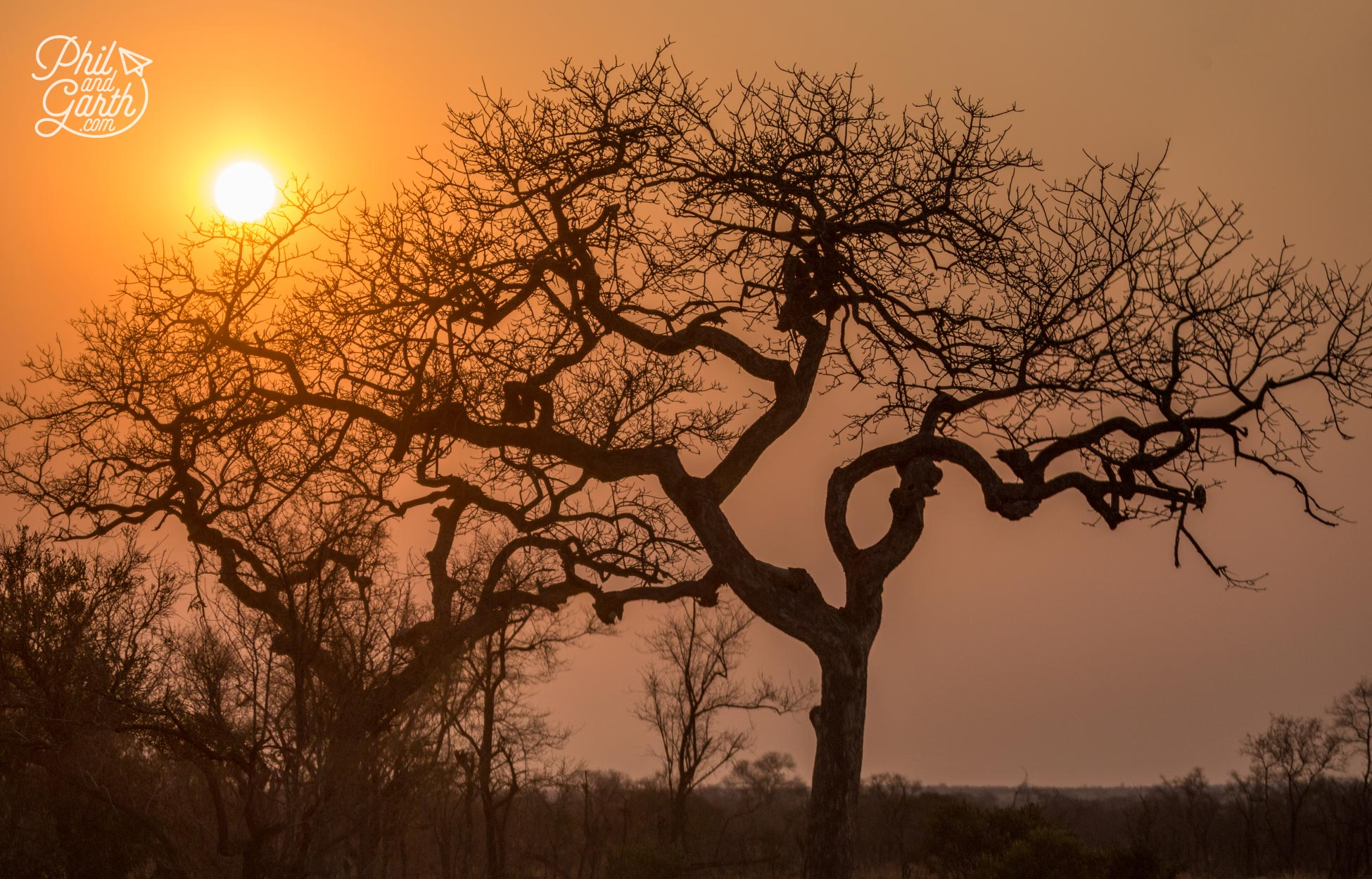 The sun goes down in Kruger National Park