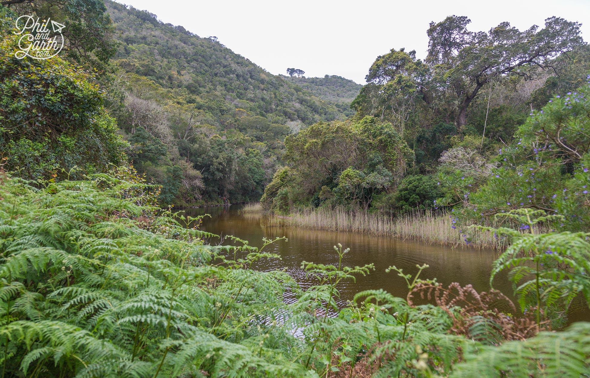 The Garden Route - Wilderness National Park