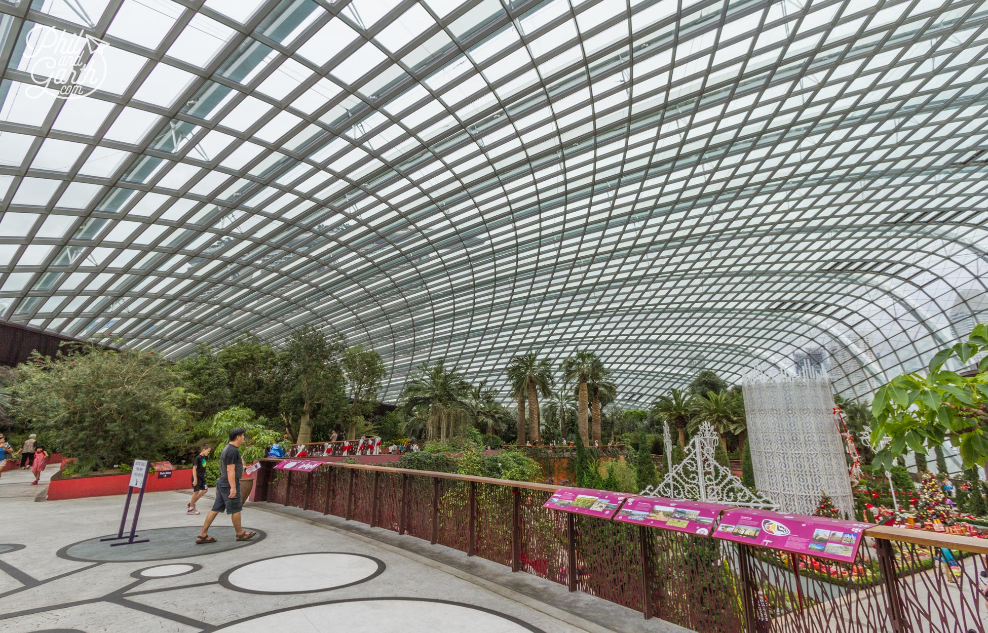 Inside the The Flower Dome - the structure was inspired by the shape of an orchid flower.