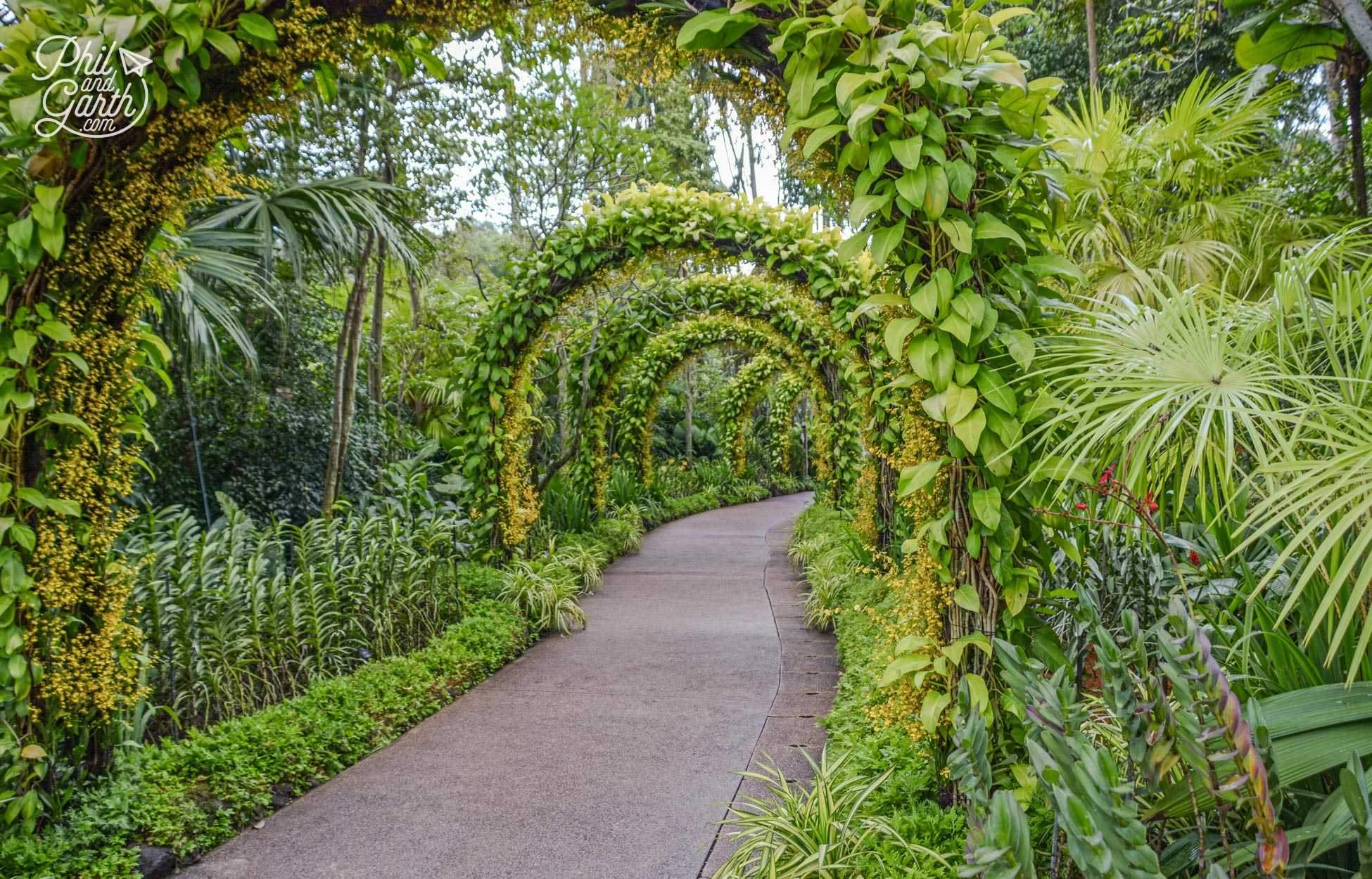 Picturesque paths in Singapore Botanic Gardens