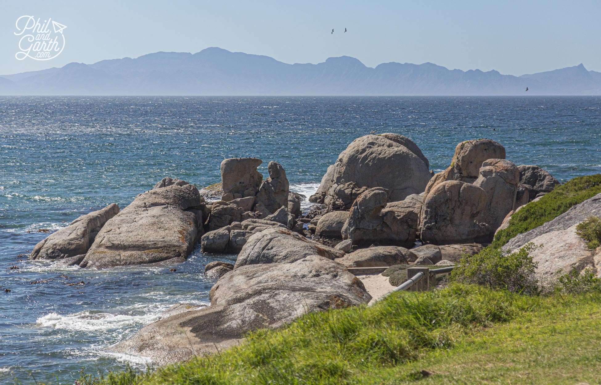 The famous Boulders Penguin Colony near Cape Town, South Africa
