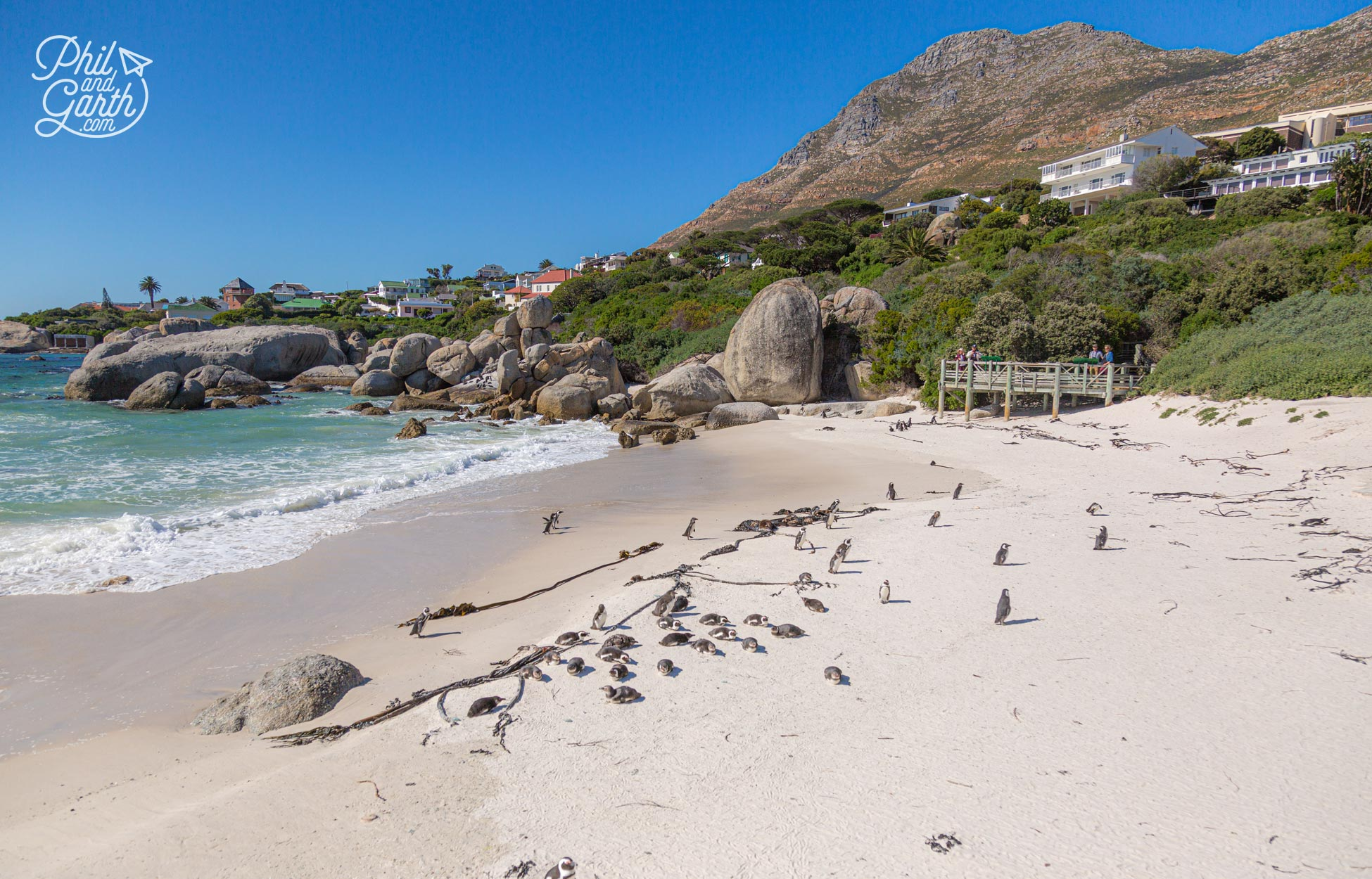 As seen from the viewing platform - Foxy Beach home to the endangered African Penguins
