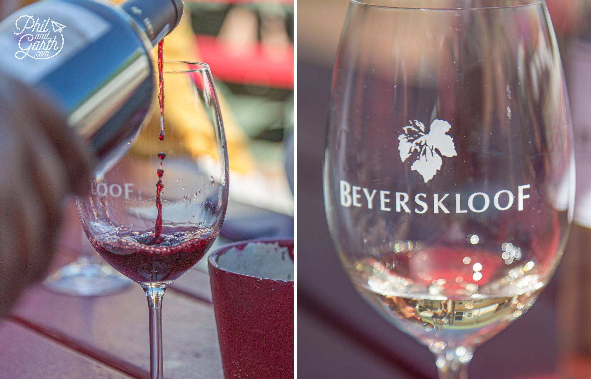 Wine tasting at Beyerskloof