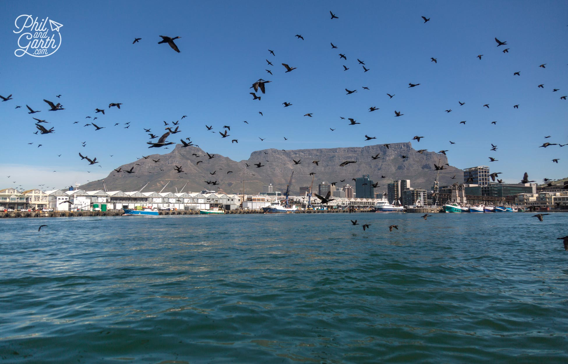 Cruising the harbour waters, perfect photos of Table Mountain