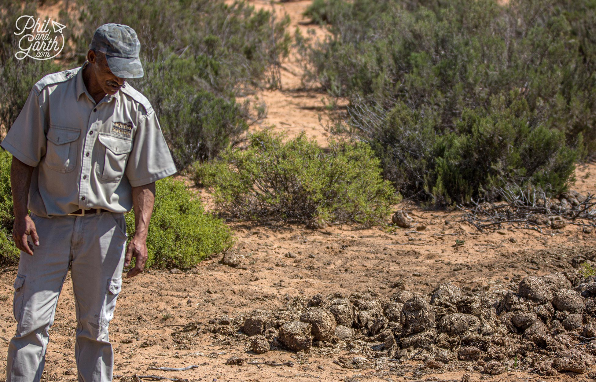 Our guide examines some dung