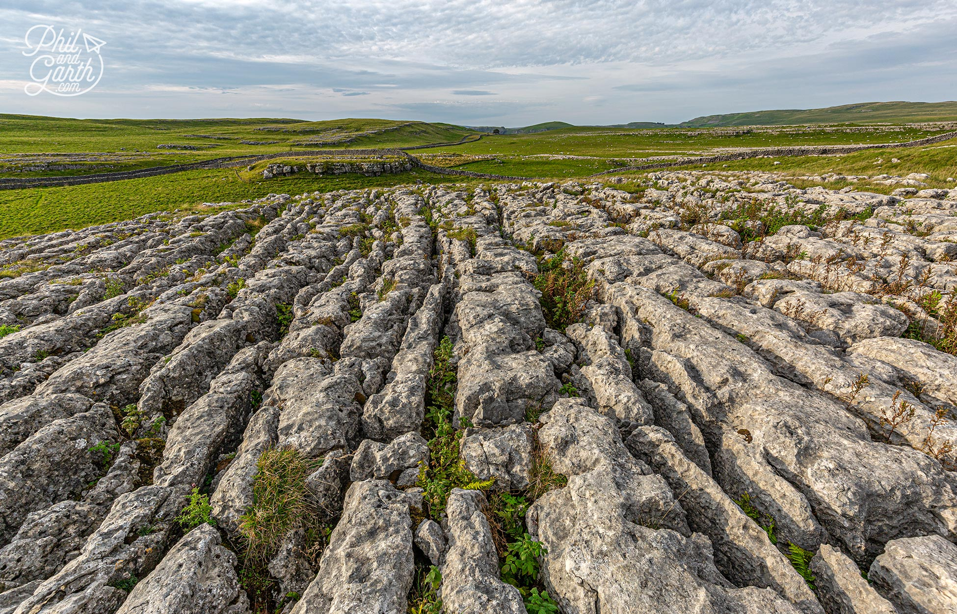 Limestone pavements are made up of clints (blocks) and grikes (fissures)