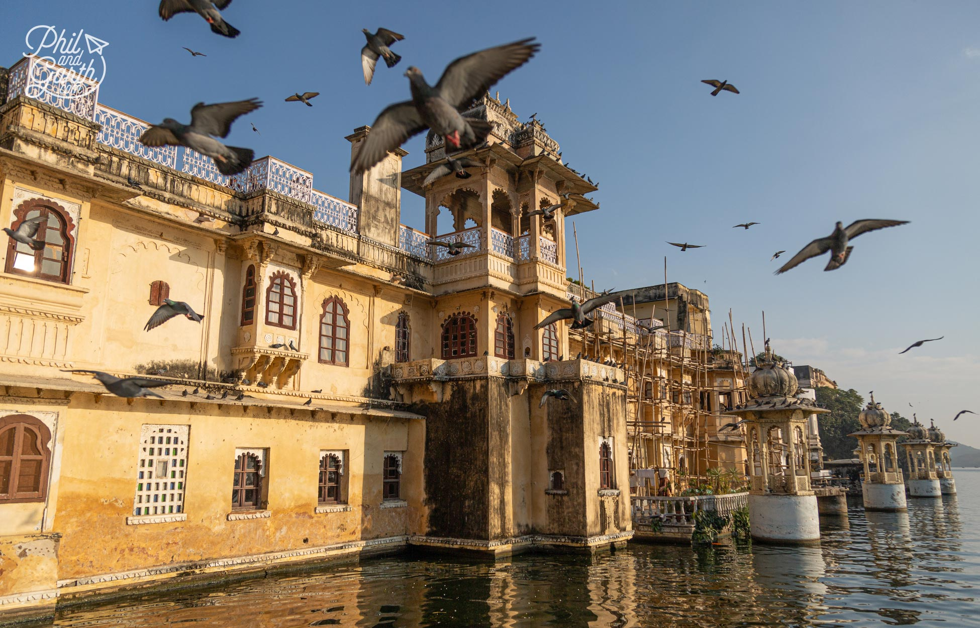 The pigeons at Gangaur Ghat make ace photos