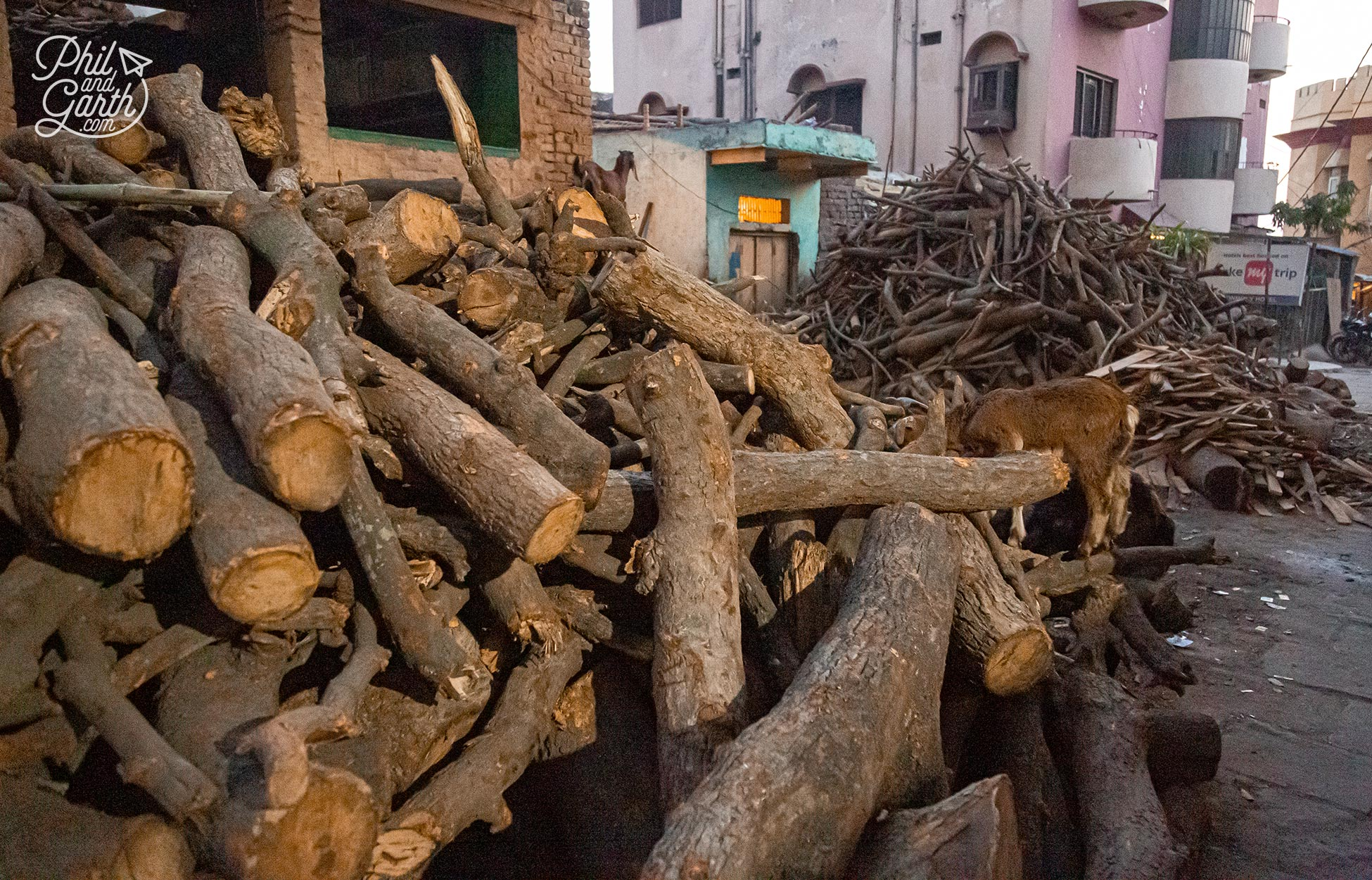 Piles of wood used for funeral pyres