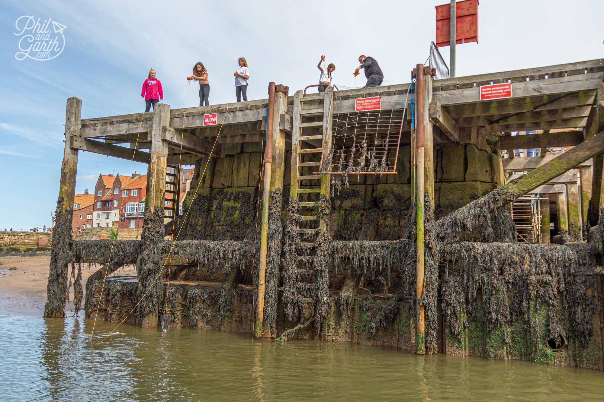 Children crabbing in Whitby Harbour