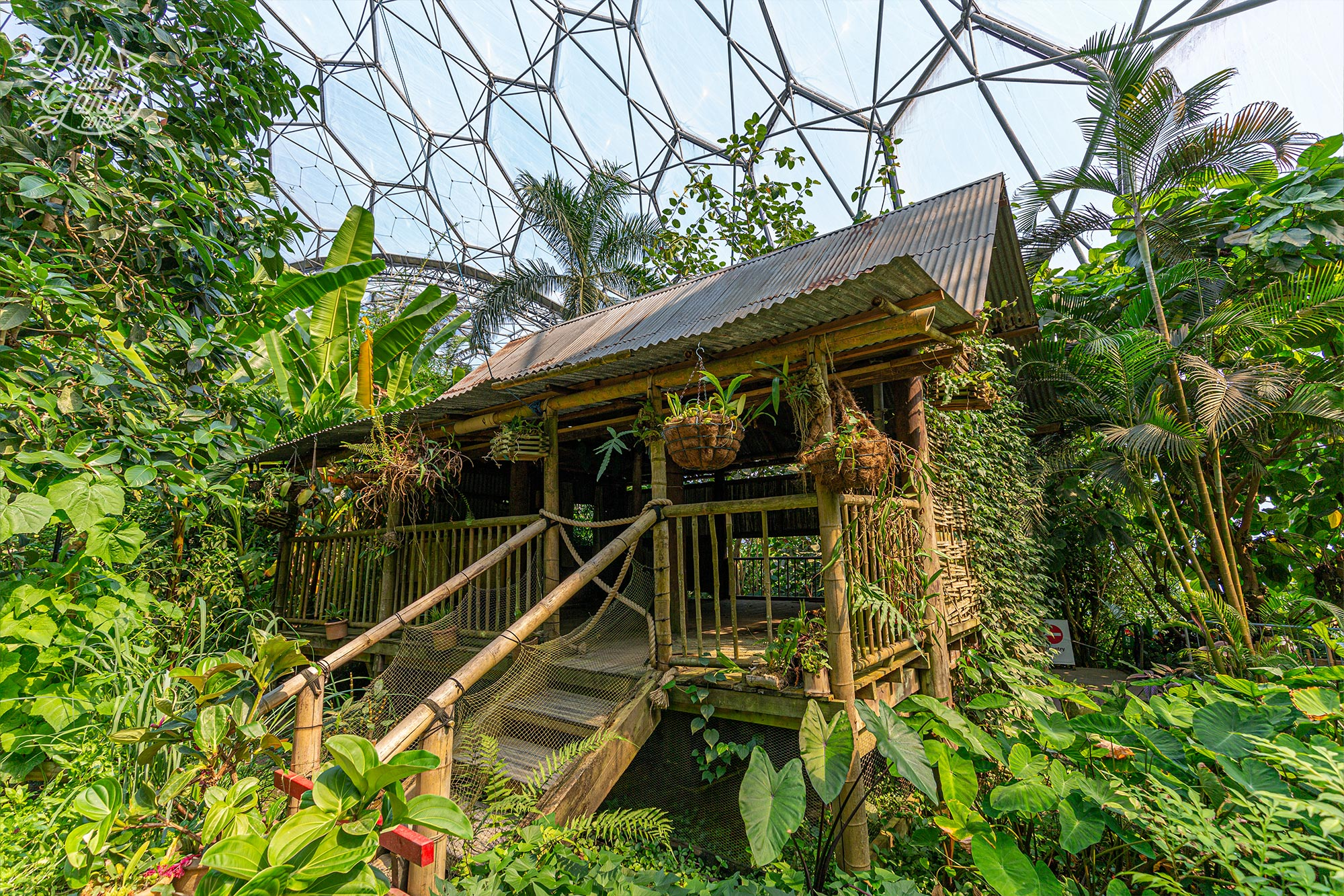 A Malaysian house in the centre of the rainforest biome