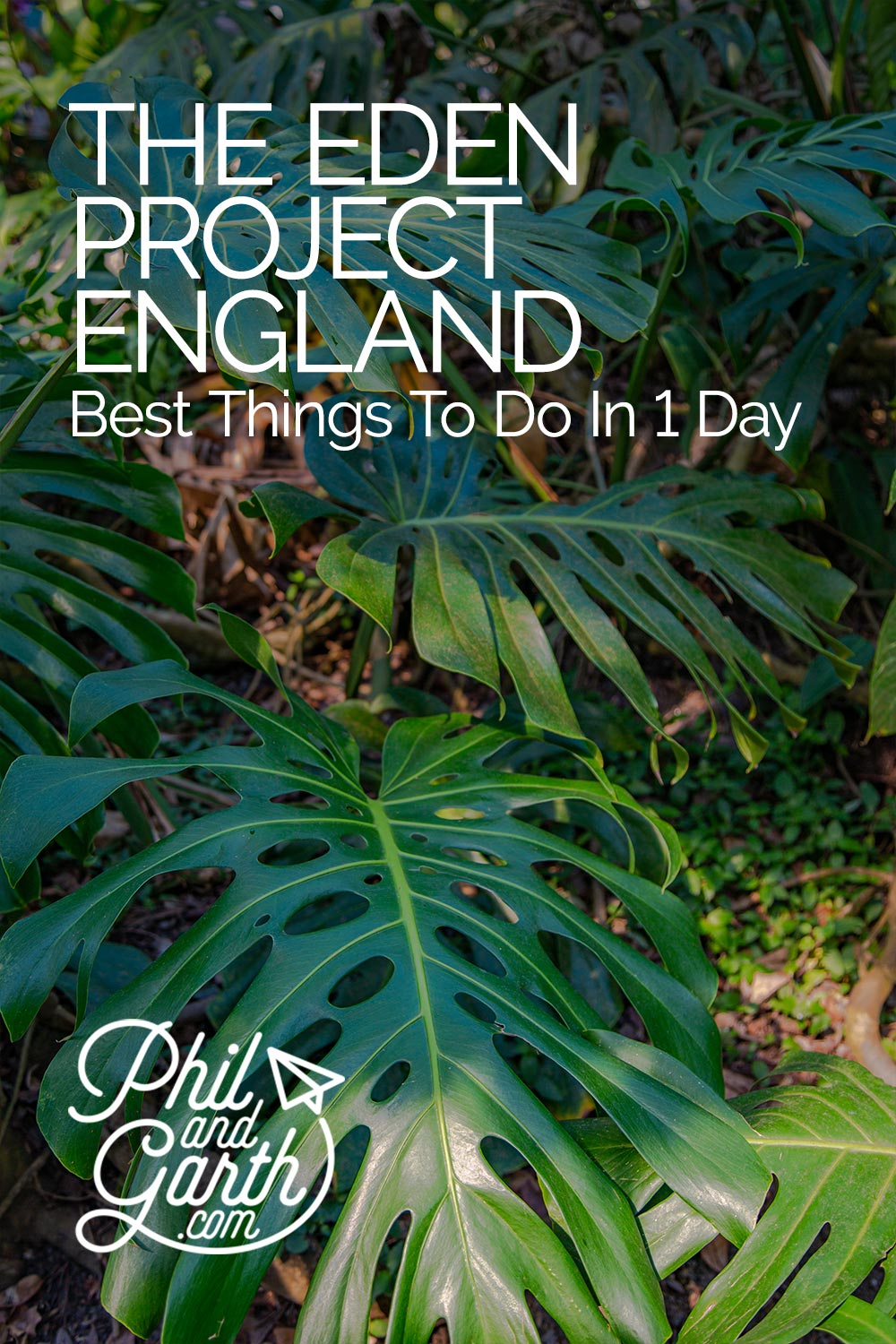 Eden Project Cornwall - The Best Things To Do In 1 Day