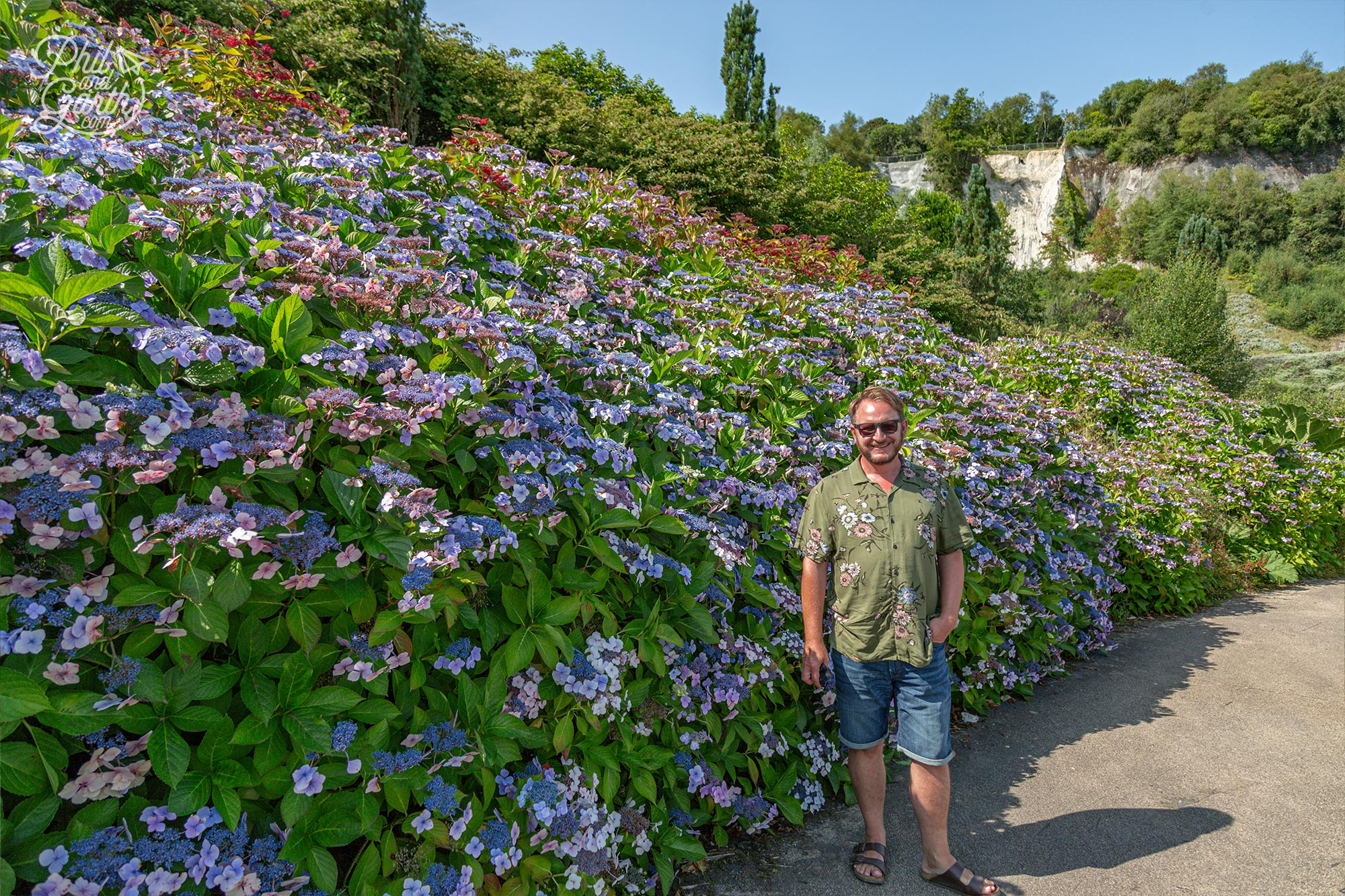 Garth stood next to this striking hydrangea border