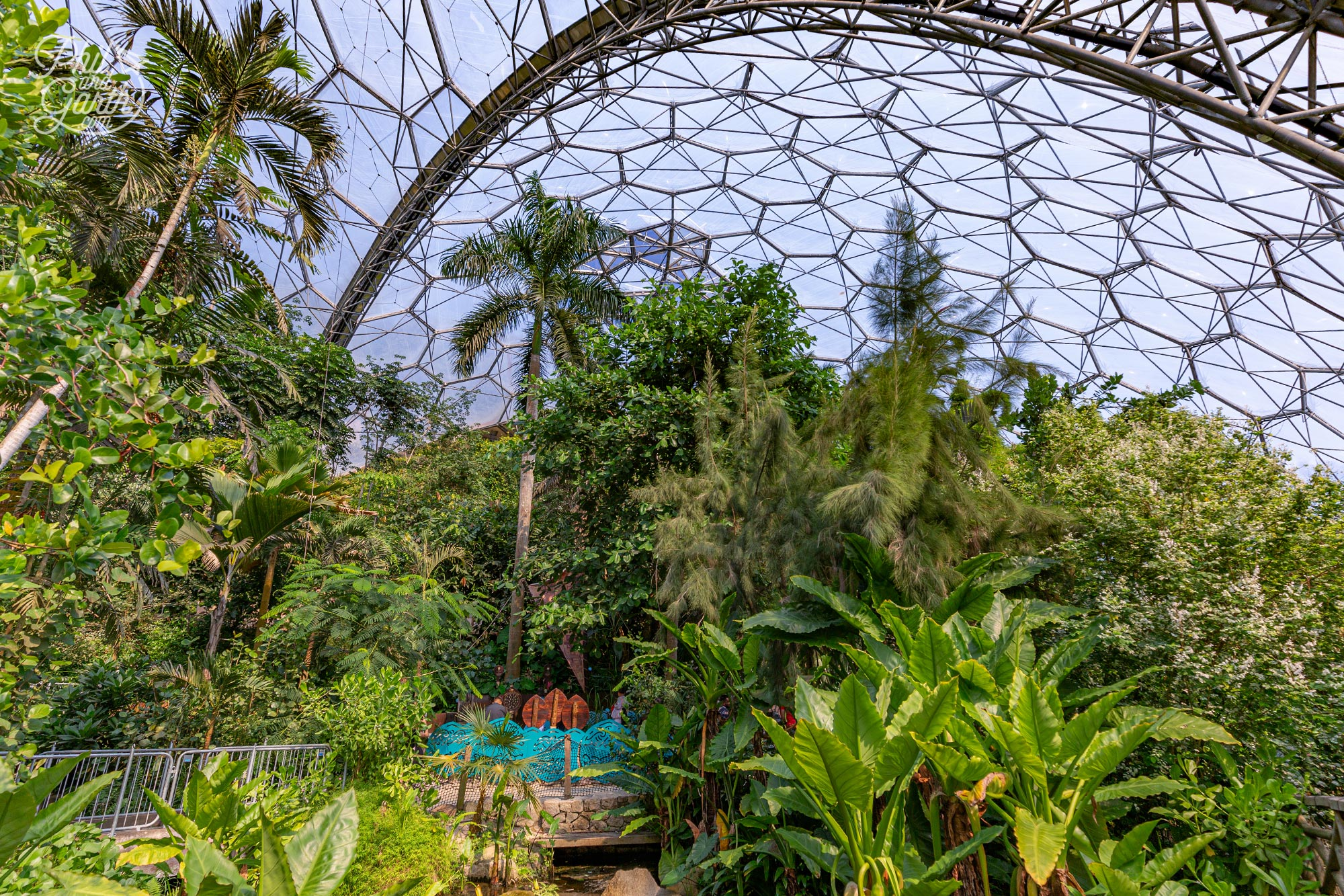 Inside the Rainforest Biome which is the world's largest indoor rainforest