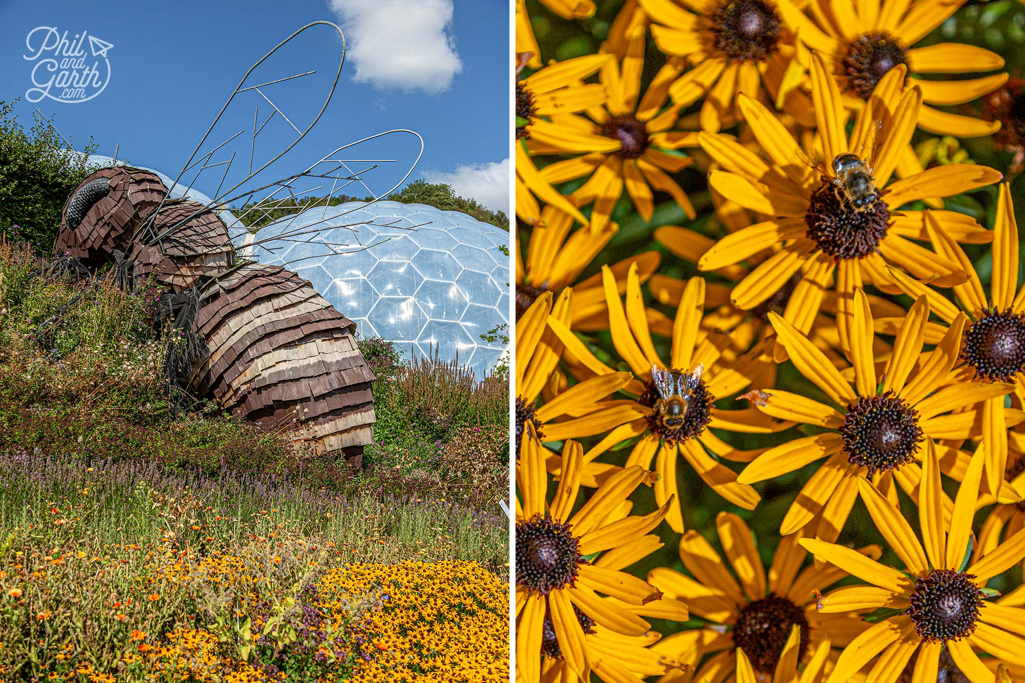 The Eden Project's iconic giant bee sculpture called Bombus